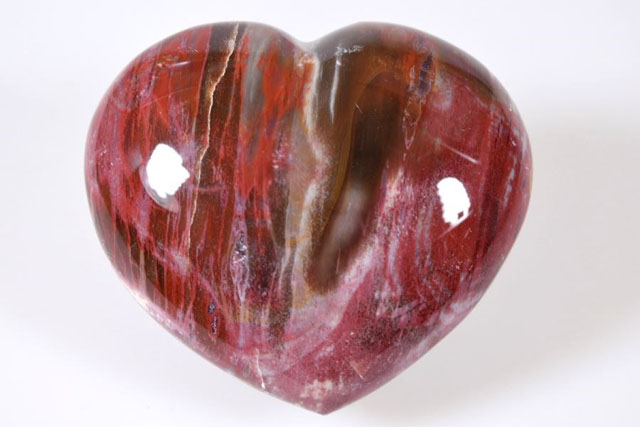 Fossil Wood Heart